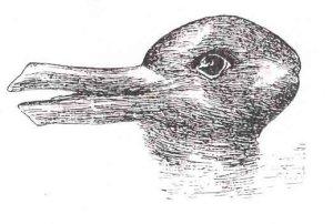 Duck-Rabbit illusion
